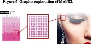 Figure 5: Graphic explanation of MAPS3. MAPS ON