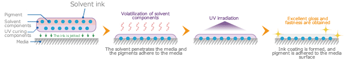 Mechanism of solvent UV ink adhesion